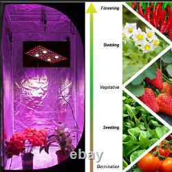 2000W 4XCOB Cree Full Spectrum Grow Light with Veg/Bloom for Hydroponic Medicals