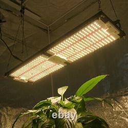 KingBrite 240w v3 QB grow light with samsung LM301H